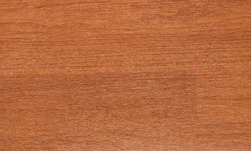 V Mature Wood Brazilian Cherry